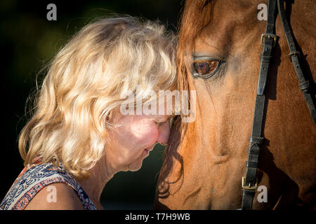 Lusitano. A woman clings her head to the head of the sorrel stallion Sabao. Germ,any - Stock Photo