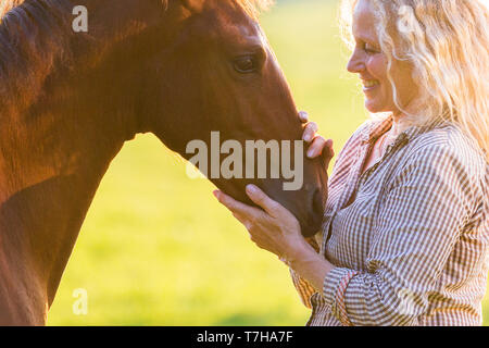 Iberian Sport Horse. Andrea Jaenisch fondling a bay foal on a pasture. Germany - Stock Photo