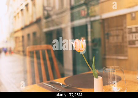 Tulip in a vase on the table cafe behind glass with a reflection of the life of the city of Riga in spring - Stock Photo