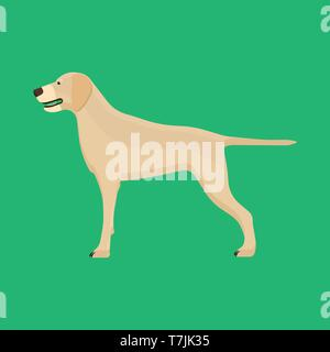 Dog labrador animal pet vector icon side view. Isolated puppy cute cartoon happy friend. Brown standing canine silhouette - Stock Photo