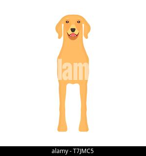 Dog labrador animal pet vector icon front view. Isolated puppy cute cartoon happy friend. Brown standing canine silhouette - Stock Photo