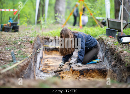 Bielefeld, Germany. 08th May, 2019. Aileen Nowack, a student of archaeology, digs into the excavated Roman marching camp. Archaeologists of the Landschaftsverband Westfalen-Lippe (LWL) have uncovered the remains of a 2000 year old Roman marsh marsher in the district of Sennestadt. Credit: Guido Kirchner/dpa/Alamy Live News - Stock Photo