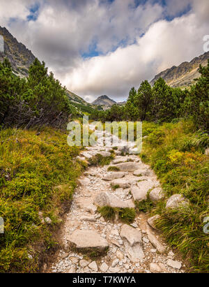 Rocky Hiking Trail in the Mountains with Mountain Peak on Cloudy Day. Mlynicka Valley, High Tatra, Slovakia. - Stock Photo