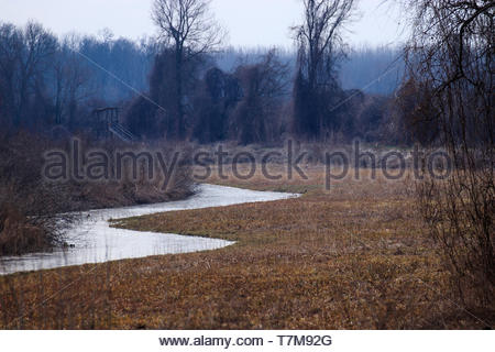Frozen spring, Winter time in nature, Icy cold - Stock Photo