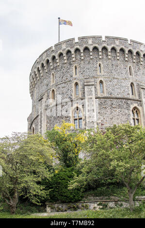 Round Tower and moat garden with flat on at Windsor Castle - the Queens Royal weekend residence ,Windsor, Berkshire , England - Stock Photo