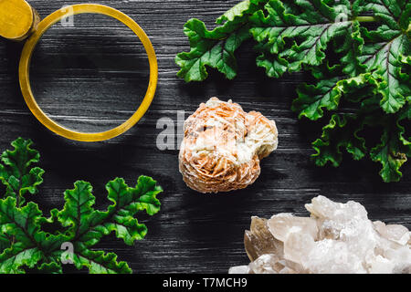 Magnifying Glass with Selenite Rose, Quartz Cluster and Foliage on Black Stained Wood - Stock Photo
