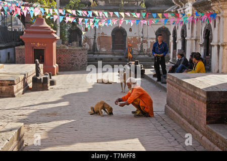 A Hindu holy man (sadhu) feeds a dog in the courtyard of a temple at Pashupatinath complex, Kathmandu Valley, Nepal - Stock Photo