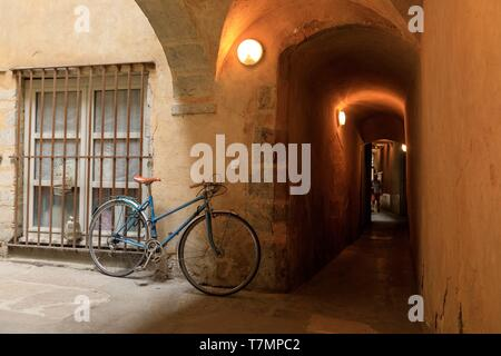 France, Rhone, Lyon, 5th district, Old Lyon district, historic site listed as World Heritage by UNESCO, rue Saint Jean, Traboule - Stock Photo