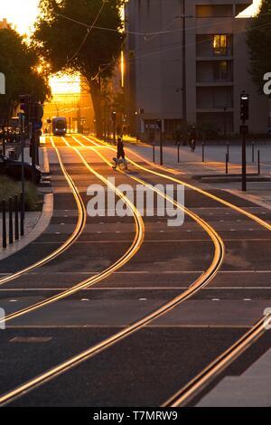 France, Rhône, Lyon, 7th district, La Mouche district, Debourg avenue, tramway - Stock Photo
