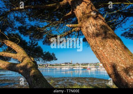 France, Morbihan, Port-Louis, Driasker cove - Stock Photo