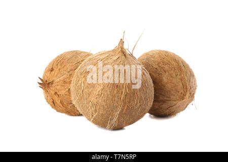 Fresh tropical coconuts isolated on white background - Stock Photo