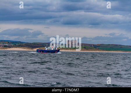 Bamburgh Castle and former fishing boat taking tourists from Seahouses to the Farne Islands to look for birds and seals, Northumberland, UK. May 2018. - Stock Photo