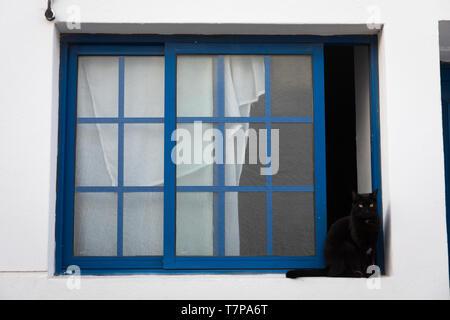 Black cat sitting on a window sill - Stock Photo