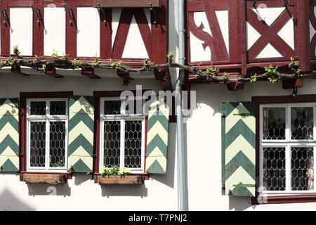 Typical red and white half timbered house (Bacharach, Germany, Europe) - Stock Photo
