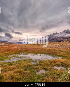 Landscape, Igaliku, Greenland