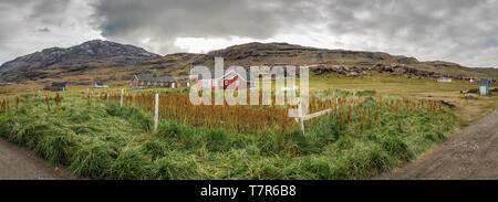 Farmland, Igaliku, Greenland