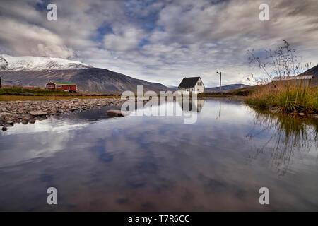 Scenic, Igaliku, Greenland