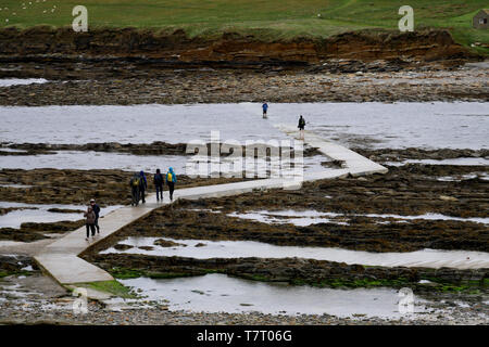 Tourists crossing the causeway to the Brough of Birsay at low tide from Orkney Mainland in Scotland, UK - Stock Photo
