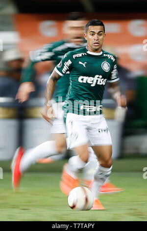 Sao Paulo, Brazil. 08th May, 2019. PALMEIRAS X SAN LORENZO ARG - Dudu of Palmeiras during match between Palmeiras and San Lorenzo (Argentina) valid for the sixth and final round of the group stage of the Copa Libertadores de America 2019, held at Allianz Parque. Credit: Foto Arena LTDA/Alamy Live News - Stock Photo