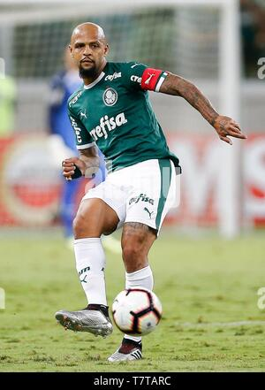 Sao Paulo, Brazil. 08th May, 2019. PALMEIRAS X SAN LORENZO ARG - Felipe Melo do Palmeiras during a match between Palmeiras and San Lorenzo (Argentina) valid for the sixth and final round of the group stage of the Copa Libertadores de America 2019, held at Allianz Parque. Credit: Foto Arena LTDA/Alamy Live News - Stock Photo