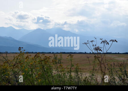 View of the Fagaras mountains from north side. Romania. - Stock Photo