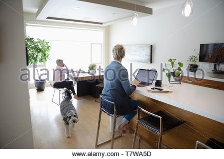 Woman using laptop in kitchen while senior mother talking on smart phone in background - Stock Photo