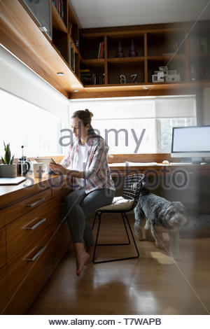 Woman working from home, using digital tablet in home office - Stock Photo