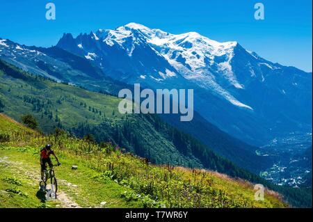 France, Haute-Savoie, Le Tour, Tour du Mt Blanc, col de Balme and pastures, mountain bike with Mont Blanc in the back - Stock Photo