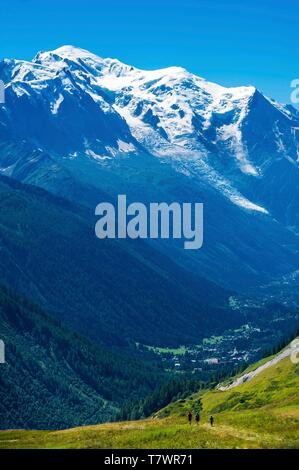 France, Haute-Savoie, Le Tour, Tour du Mt Blanc, col de Balme and pastures, with Mont Blanc in the back - Stock Photo