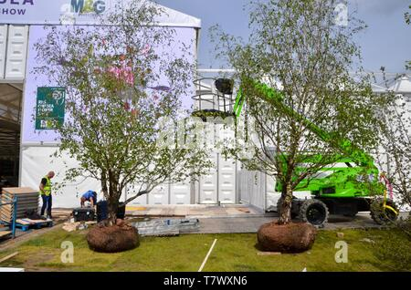 rarely seen; the setting up of the annual RHS chelsea flower show in london england may 2019 UK - Stock Photo