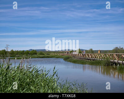 Visitors walking on one of the raised wooden footpaths that cross the lagoon at Fuente de Piedra Nature Reserve in Andalucia, Spain. - Stock Photo