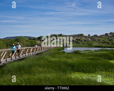 Visitors walking on the wooden Footpath across the Salt water lagoon at Fuente de Piedra Nature Reserve, watching the Wading Birds. Spain - Stock Photo