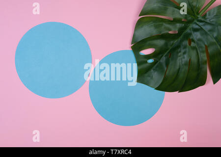 Green tropical monstera leaf on pink background with copy space. Art concept - Stock Photo