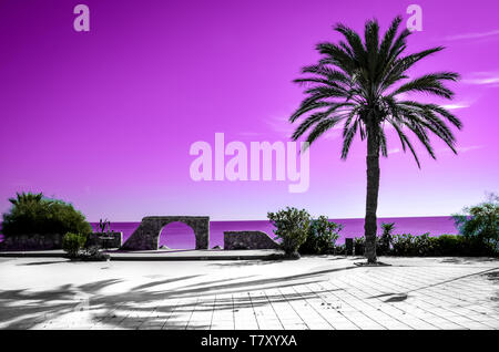 Palm tree silhouette with pink sky and sea in the background. Different kind of wallpaper with gradient colors evoking summer vibes and vacation feelings. - Stock Photo