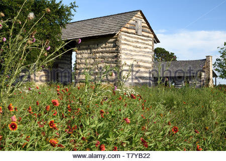 Log Cabin. Log Cabin in Texas with Texas Wildflowers. Cabin B. Log Cabin with Dogtrot. Log Cabin at LBJ state park. Log Cabin Texas Hill Country TX - Stock Photo