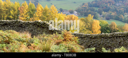 A dry stone wall and autumn colours around Burnsall in Wharfedale, The Yorkshire Dales National Park, Yorkshire, England, United Kingdom, Europe - Stock Photo
