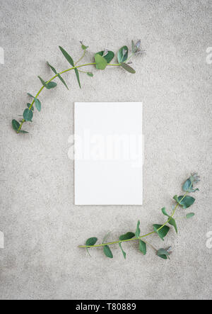 Blank canvas with copy space and eucalyptus branches, on concrete background. - Stock Photo