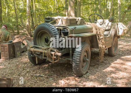 Woodhall Spa 1940s world war two festival re-enactment weekend, Willis jeep in woodland clearing, with US marking - Stock Photo
