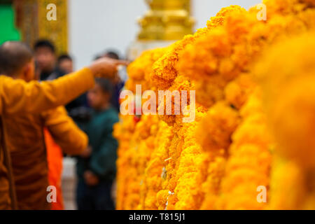 Thai calendula craft garland handmade hang on to pagoda barricade covered by yellow gold cloth. - Stock Photo