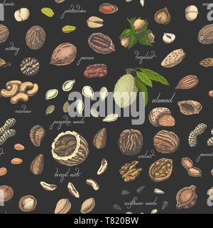 Seamless pattern with colored nuts and seeds. Vector illustration for your design - Stock Photo