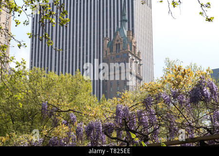 Sherry-Netherland Hotel  and The General Motors Building on Fifth Avenue as seen from the Zoo in Central Park,  NYC - Stock Photo