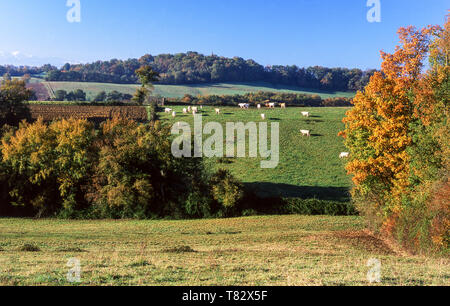 Foothills of the Pyrenees.Photo from near Pontacq which is 10k north of  Lourdes.Southwest France. - Stock Photo