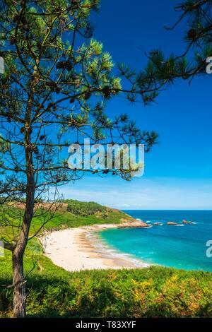 France, Cotes d'Armor, Erquy, Portuais beach in the heart of Erquy Cape - Stock Photo