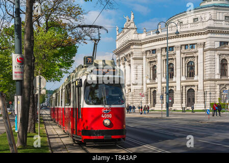 Ringstrasse Vienna, view of a tram on the Ringstrasse in central Vienna with the national theatre building (Burgtheater) in the background, Austria. - Stock Photo
