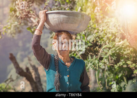 Indian village woman in colorful sari carries heavy basket on her head - Stock Photo