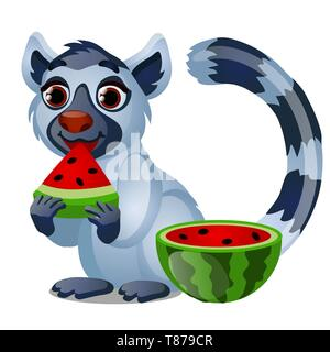 Cute lemur eating a ripe juicy watermelon isolated on white background. Vector cartoon close-up illustration. - Stock Photo