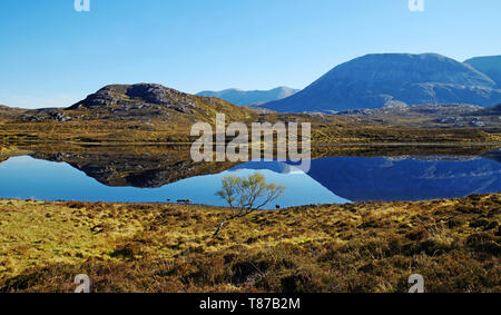 The mountain Arkle reflected in Loch Stack on a calm clear Spring morning, Sutherland, Scottish Highlands, Scotland UK - Stock Photo