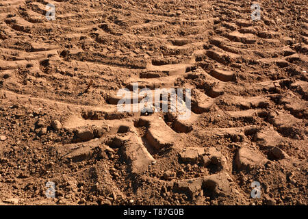 tractor wheel tracks in yellow clay on field, deep wheel tracks in dried soil from a field after harvest - Stock Photo