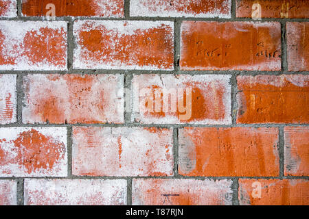 Red brick wall of newly built house showing white stains / coating due to efflorescence, migration of salt to the surface of a porous material - Stock Photo