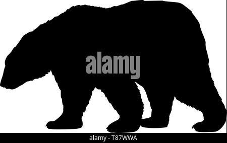 Brown bear wild black silhouette animal - Stock Photo